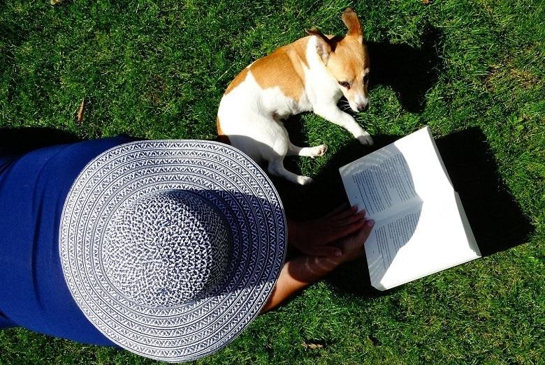 Eine Person mit Hut liegt auf der Wiese und liest ein Buch. Neben der Person liegt ein Hund. Das Motiv ist von oben, aus der Vogelperspektive fotografiert. Symbolbild für die Lesetipps Juni 2017.